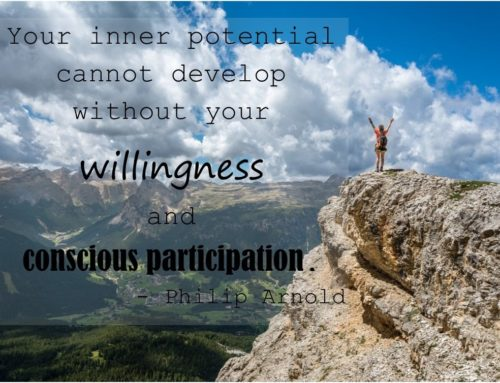 A little willingness goes a long way
