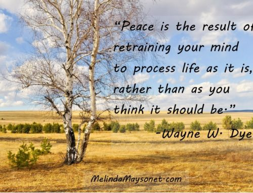 Practice being the peace you seek